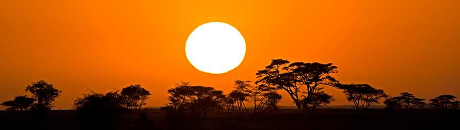 Fotoreise_Fotosafari_Fotoworkshop_Benny-Rebel_Afrika_Tansania_084_Afrika