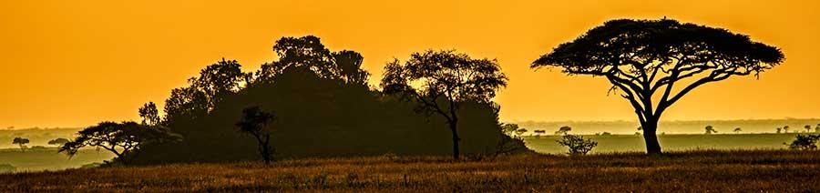 Fotoreise_Fotosafari_Fotoworkshop_Benny-Rebel_Afrika_Tansania_085_Afrika