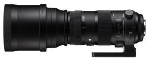 Sigma-150-600mm-Sport-Fotoreise-Afrika-Fotosafari