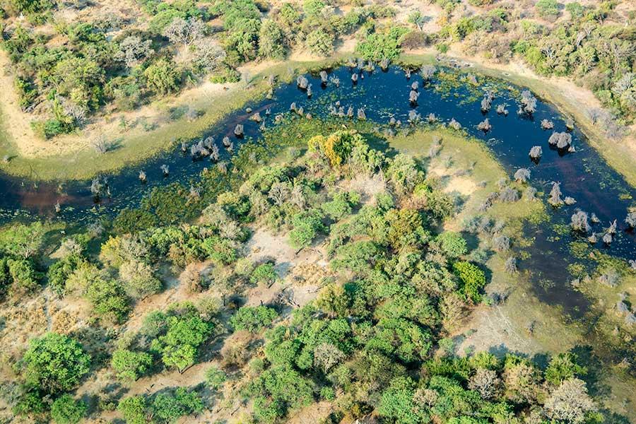 Botswana-Fotoreise-Fotosafari-Benny-Rebel-Afrika-010