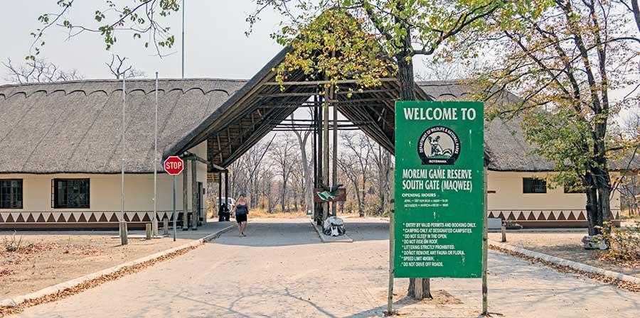 Botswana-Fotoreise-Fotosafari-Benny-Rebel-Afrika-012