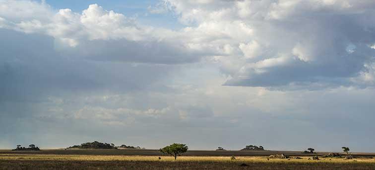 Fotoreise_Fotosafari_Tansania_Afrika_024