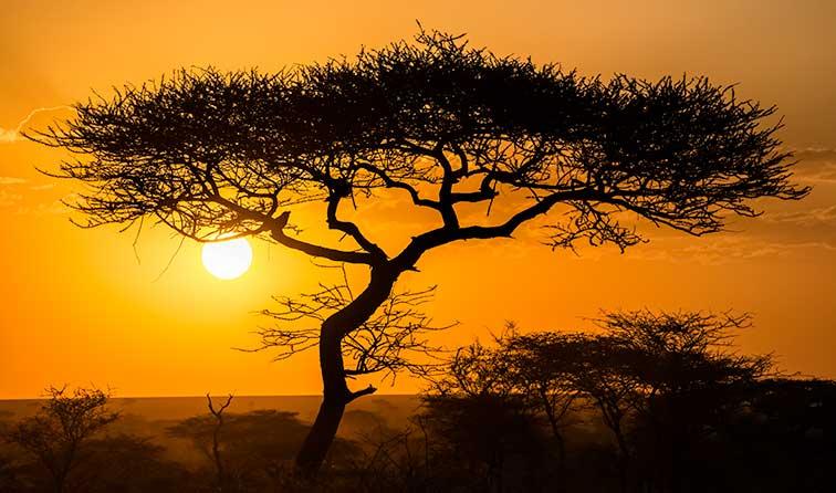 Fotoreise_Fotosafari_Tansania_Afrika_099
