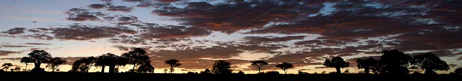 Benny-Rebel-Fotoreise_Fotosafari-Tansania-Ruanda-Afrika_A115