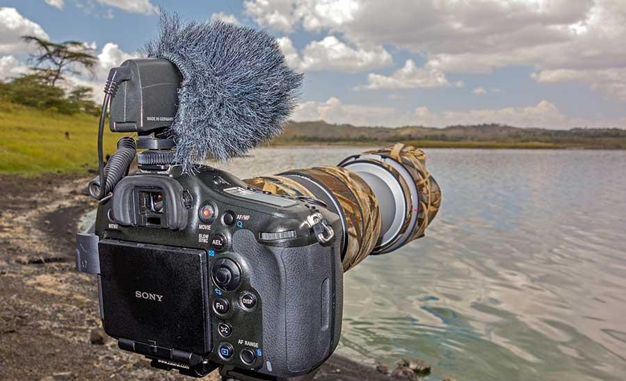 Tansania-A99-Sony-70-400mm