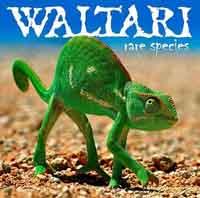 waltari1_thumbs